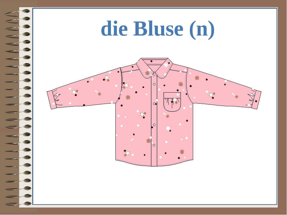 die Bluse (n)