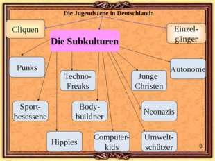 Die Jugendszene in Deutschland: Cliquen Einzel- gänger Hippies Punks Computer