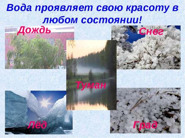 Вода проявляет свою красоту в любом состоянии! Дождь Град Снег Лёд Туман