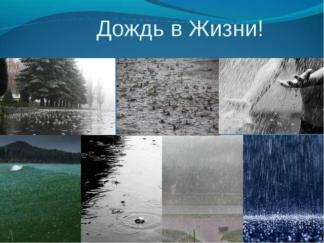 Дождь в Жизни!