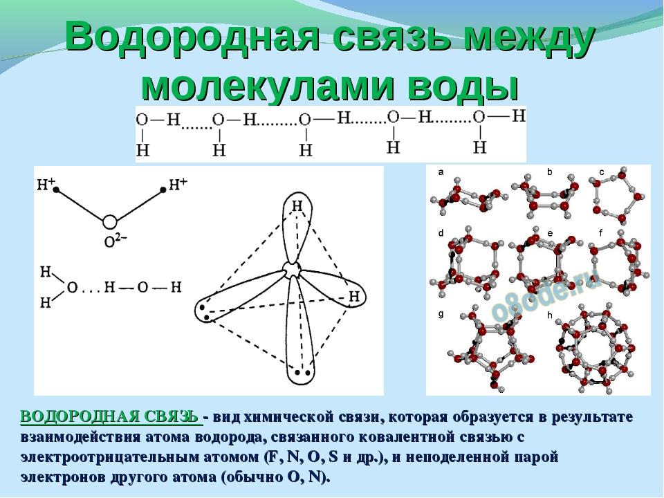 Водородная связь между молекулами воды ВОДОРОДНАЯ СВЯЗЬ - вид химической связ...