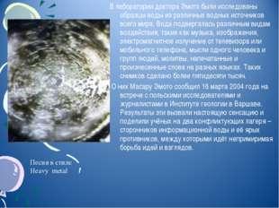 В лаборатории доктора Эмото были исследованы образцы воды из различных водных