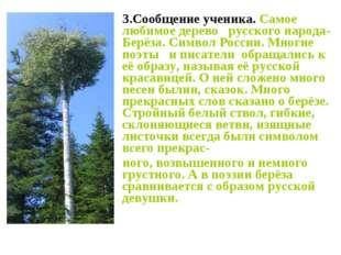 3.Сообщение ученика. Самое любимое дерево русского народа- Берёза. Символ Ро