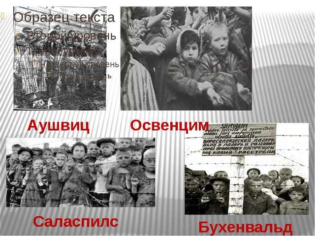 Аушвиц Бухенвальд Освенцим Саласпилс