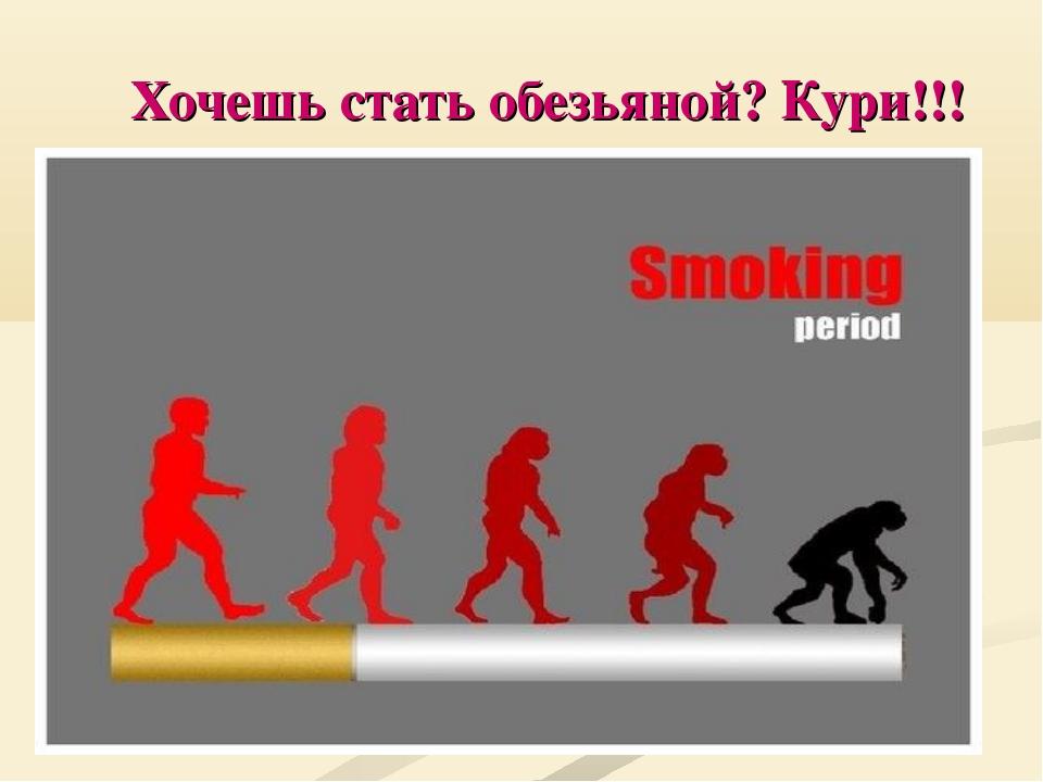 Хочешь стать обезьяной? Кури!!!
