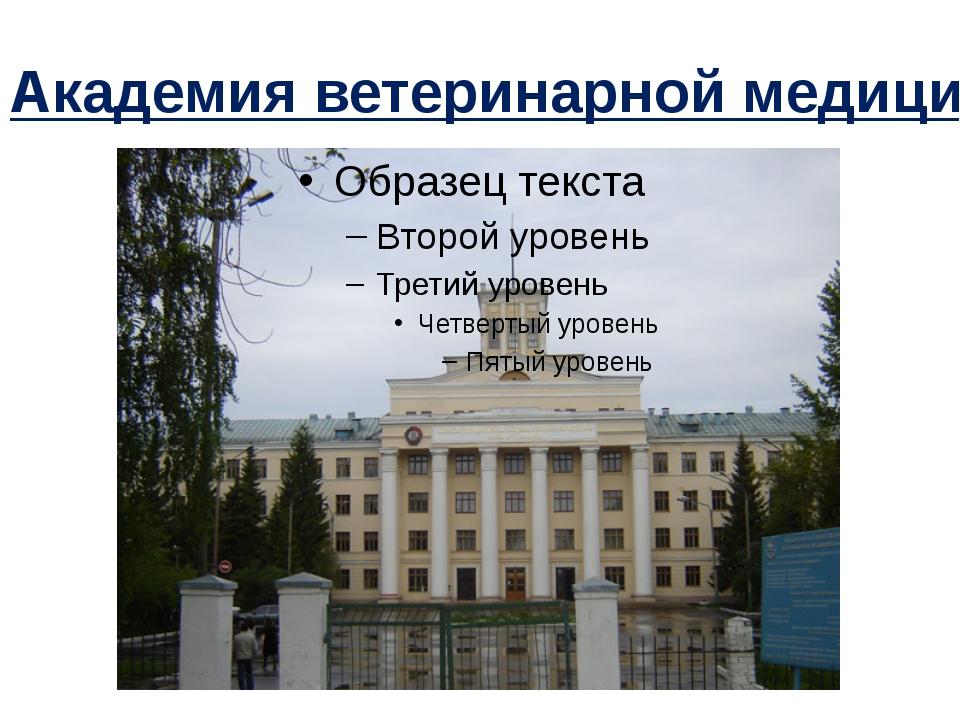 Академия ветеринарной медицины