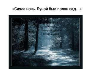 «Сияла ночь. Луной был полон сад…»