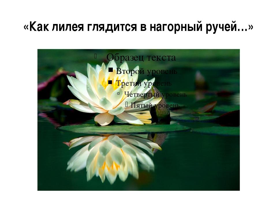 «Как лилея глядится в нагорный ручей…»