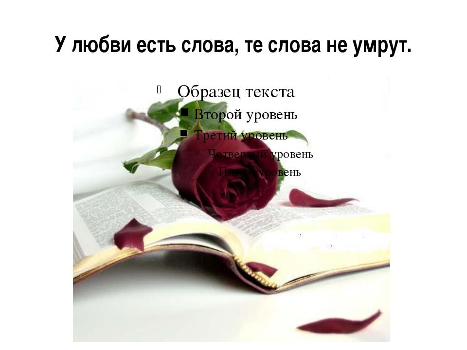 У любви есть слова, те слова не умрут.