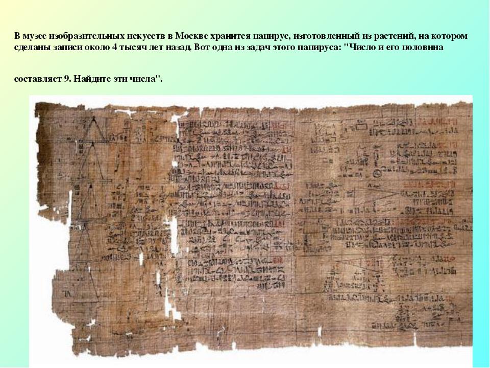 В музее изобразительных искусств в Москве хранится папирус, изготовленный из...