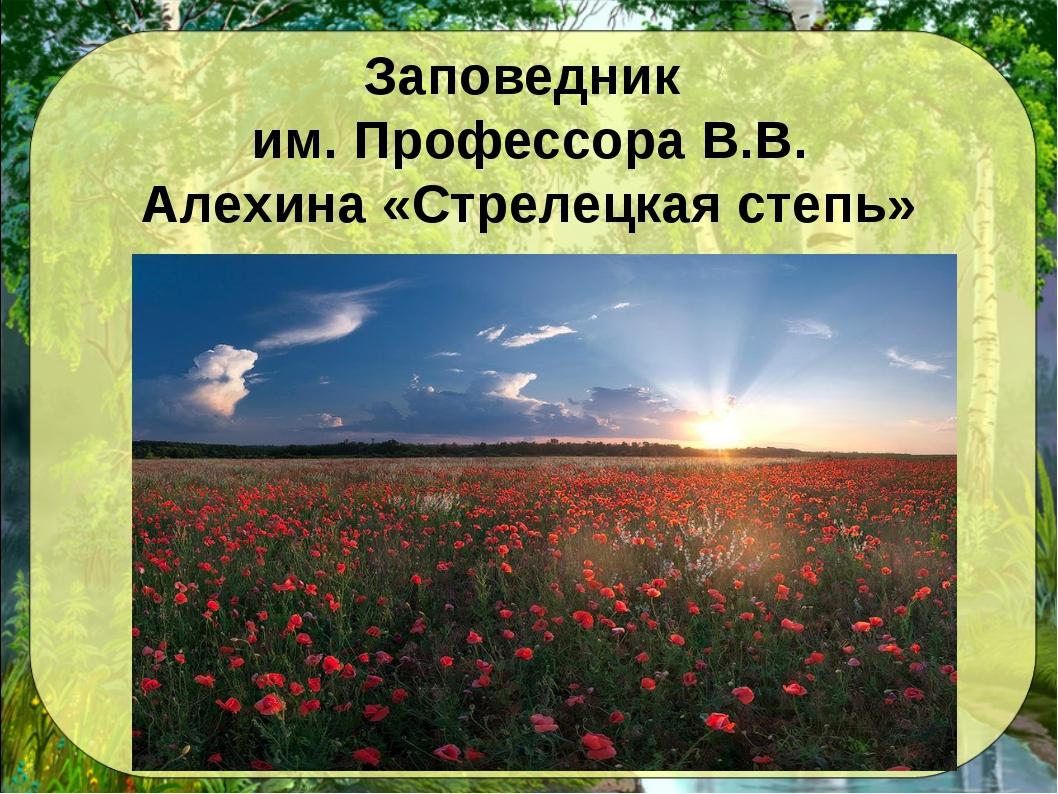 Заповедник им. Профессора В.В. Алехина «Стрелецкая степь»