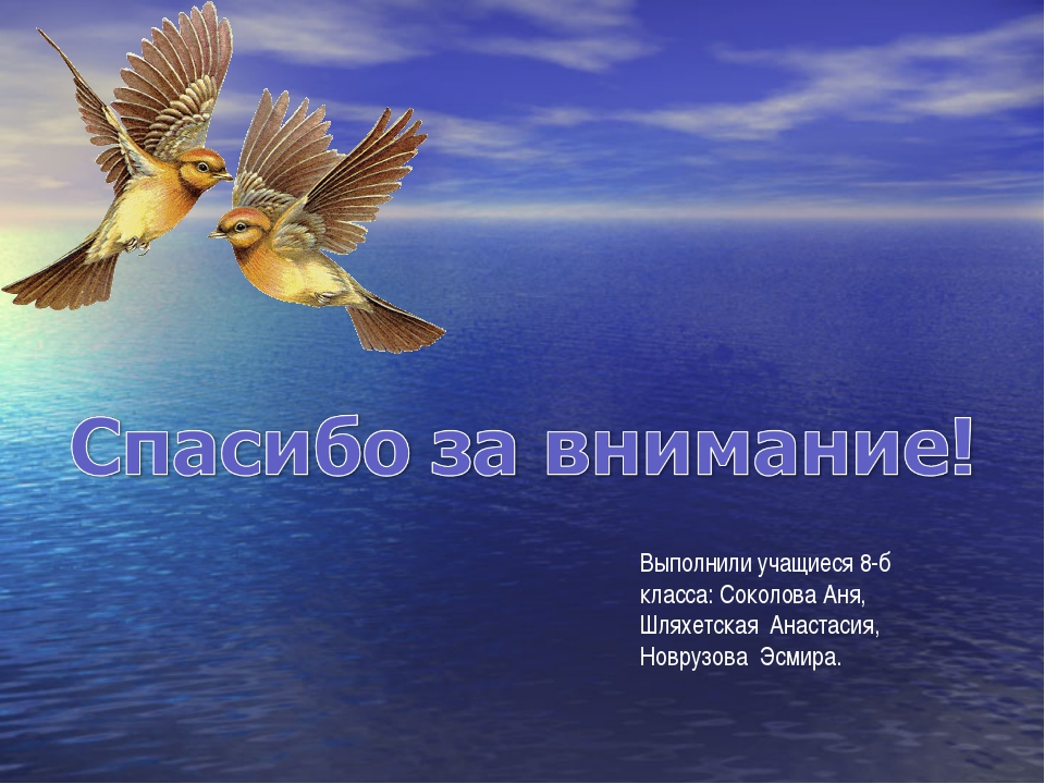 Выполнили учащиеся 8-б класса: Соколова Аня, Шляхетская Анастасия, Новрузова...