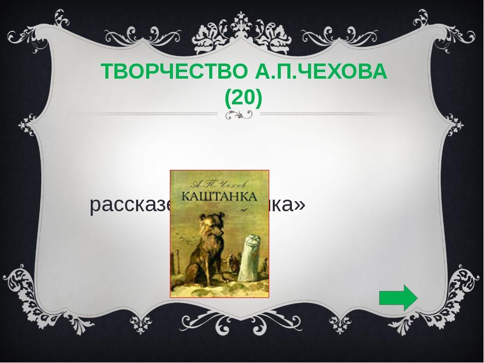 ТВОРЧЕСТВО А.П.ЧЕХОВА (20) В рассказе «Каштанка»