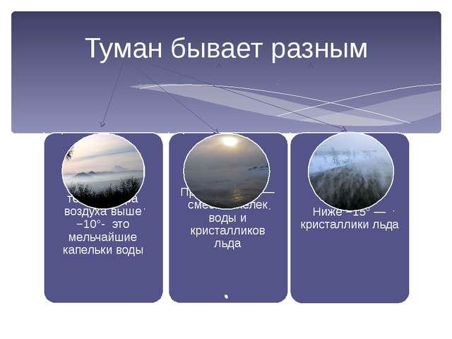 Туман бывает разным