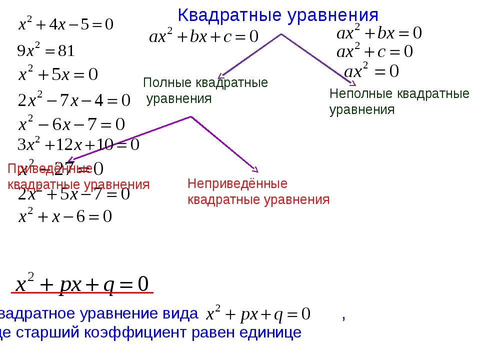Квадратные уравнения Полные квадратные уравнения Неполные квадратные уравнени...
