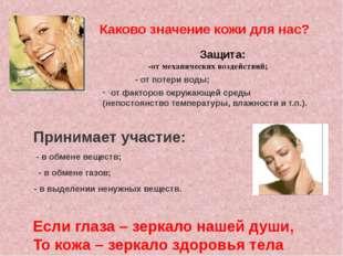 Каково значение кожи для нас? Защита: -от механических воздействий; - от поте