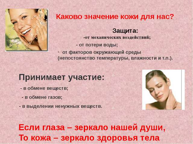 Каково значение кожи для нас? Защита: -от механических воздействий; - от поте...