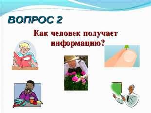 ВОПРОС 2 Как человек получает информацию?
