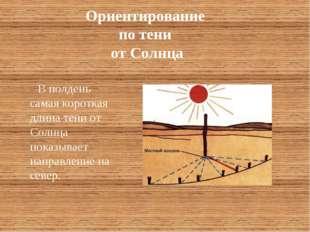 Ориентирование по тени от Солнца В полдень самая короткая длина тени от Солнц