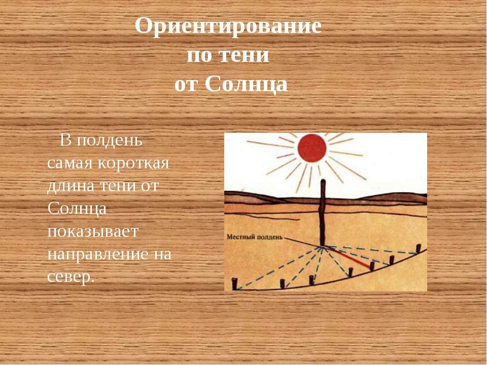 Ориентирование по тени от Солнца В полдень самая короткая длина тени от Солнц...