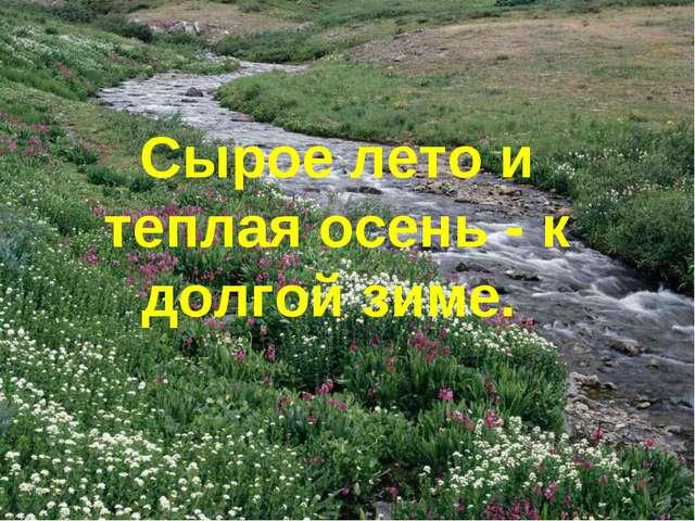 Сырое лето и теплая осень - к долгой зиме.