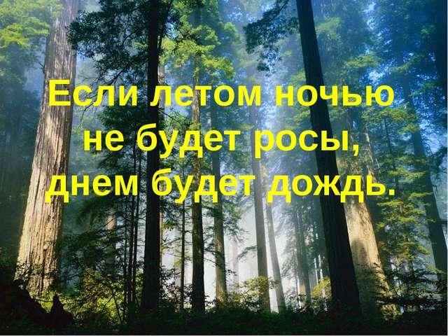 Если летом ночью не будет росы, днем будет дождь.