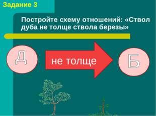 Задание 3 Постройте схему отношений: «Ствол дуба не толще ствола березы» не т