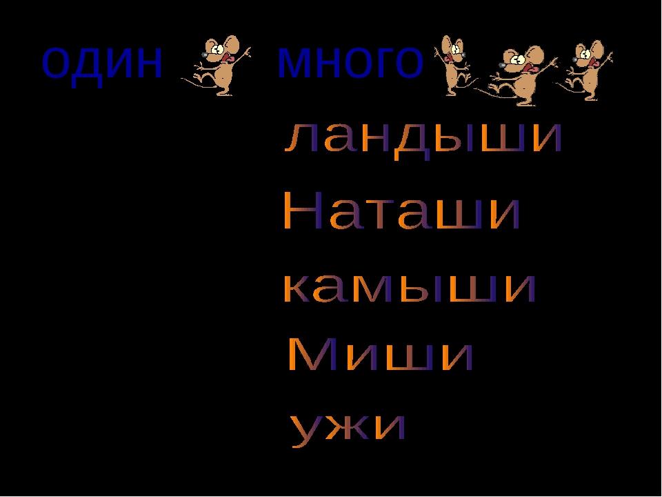 одинмного ландыш Наташа камыш Миша  уж