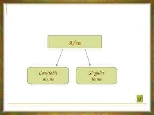 A/an Countable nouns Singular forms