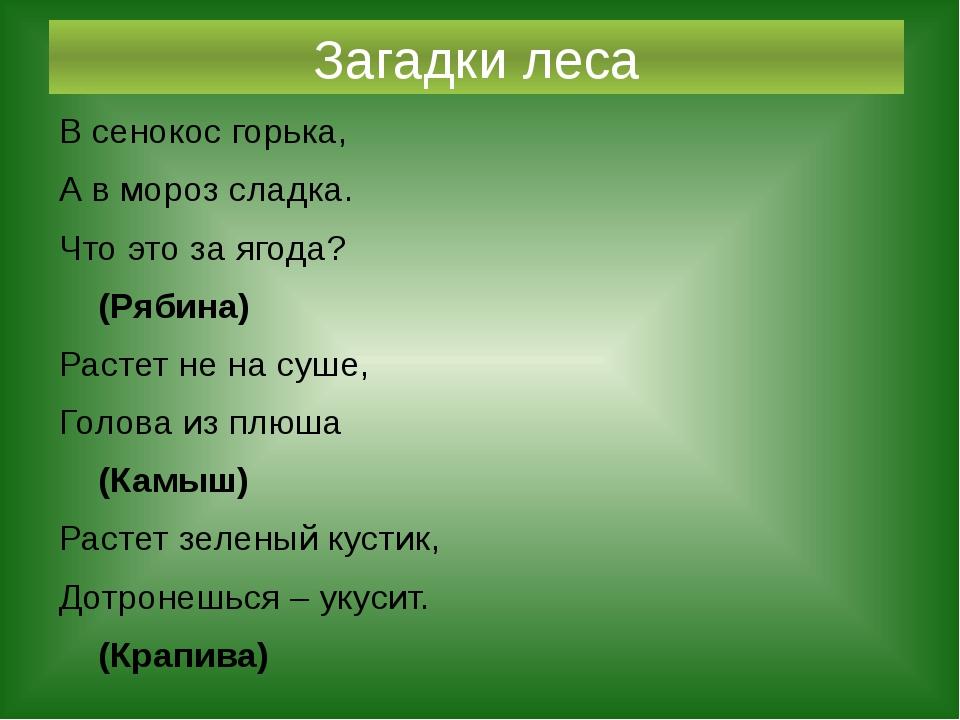 Загадки леса В сенокос горька, А в мороз сладка. Что это за ягода? (Рябина) Р...