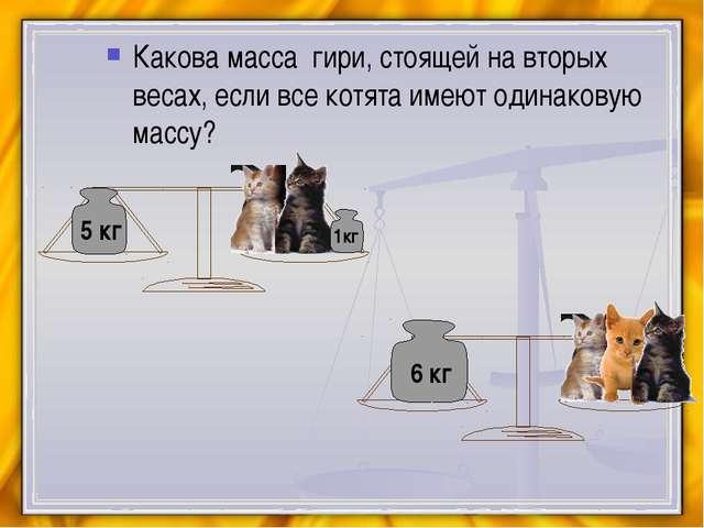 Какова масса гири, стоящей на вторых весах, если все котята имеют одинаковую...