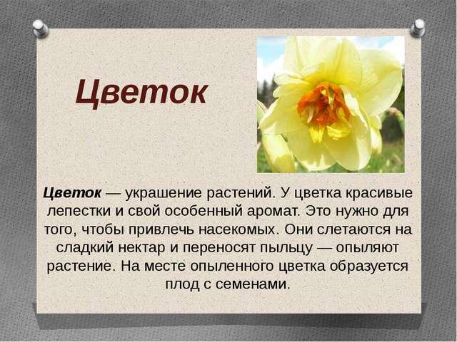 Цветок Цветок — украшение растений. У цветка красивые лепестки и свой особенн...