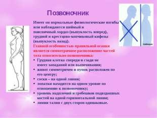 Позвоночник Имеетон нормальныефизиологические изгибы или наблюдаются шейны