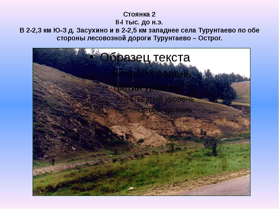 Стоянка 2 II-I тыс. до н.э. В 2-2,3 км Ю-З д. Засухино и в 2-2,5 км западнее...