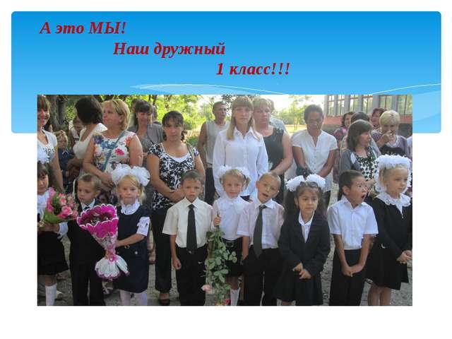 А это МЫ! Наш дружный 1 класс!!!