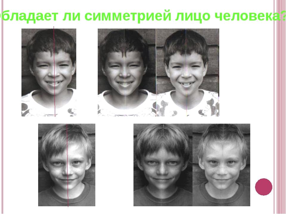 Обладает ли симметрией лицо человека?