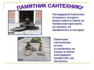 Легендарный Сантехник Степаныч, которого можно найти в Омске на Любинском про