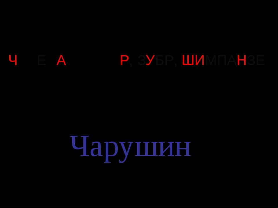 ЧЕРЕПАХА, ТИГР, ЗУБР, ШИМПАНЗЕ Чарушин