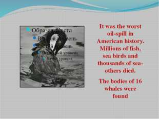 It was the worst oil-spill in American history. Millions of fish, sea birds