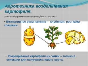 Агротехника возделывания картофеля. Какие виды размножения картофеля вы знает