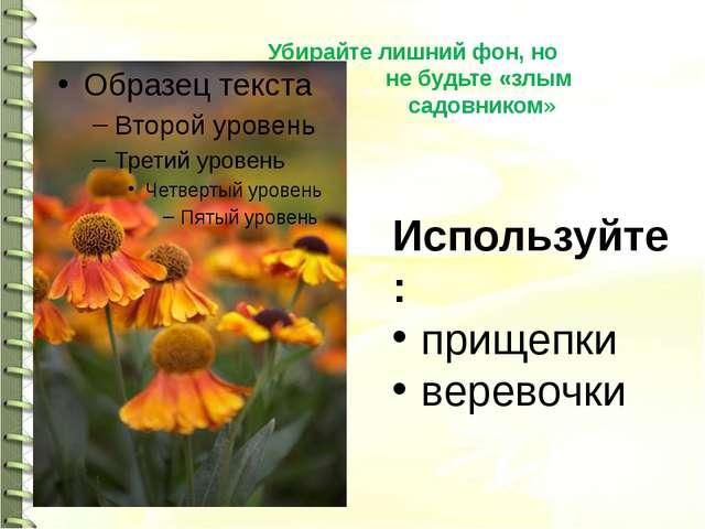 Убирайте лишний фон, но не будьте «злым садовником» Используйте: прищепки вер...