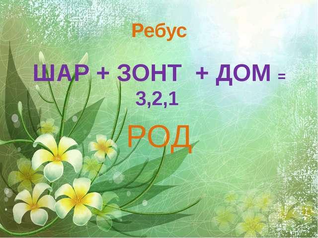 Ребус ШАР + ЗОНТ + ДОМ = 3,2,1 РОД