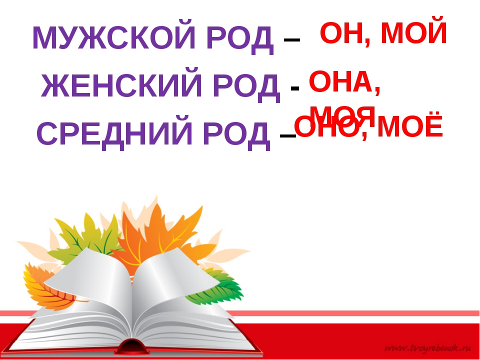 МУЖСКОЙ РОД – ЖЕНСКИЙ РОД - СРЕДНИЙ РОД – ОН, МОЙ ОНА, МОЯ ОНО, МОЁ