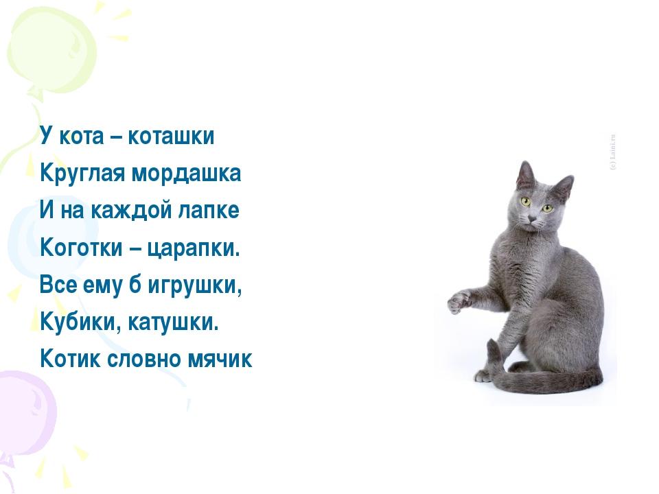 У кота – коташки Круглая мордашка И на каждой лапке Коготки – царапки. Все ем...