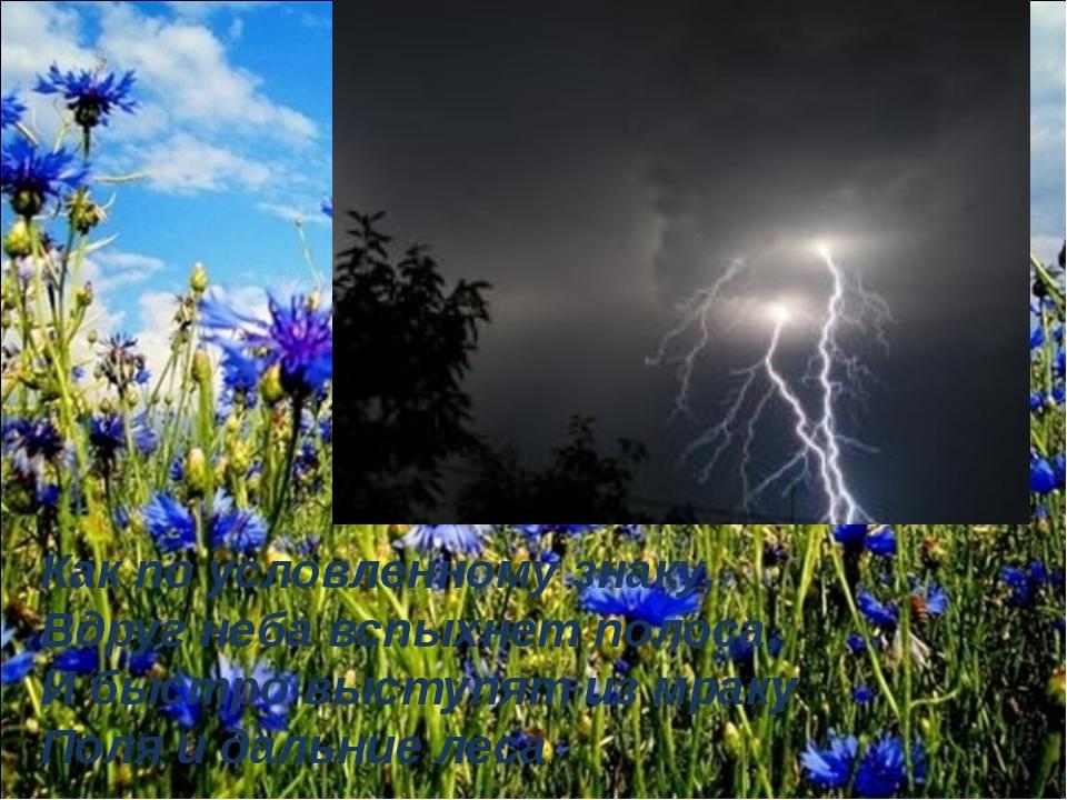 Как по условленному знаку, Вдруг неба вспыхнет полоса, И быстро выступят из м...