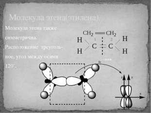 Молекула этена также симметрична. Расположение треуголь- ное, угол между осям