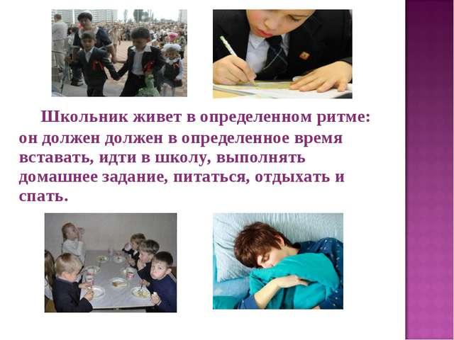 Школьник живет в определенном ритме: он должен должен в определенное время в...