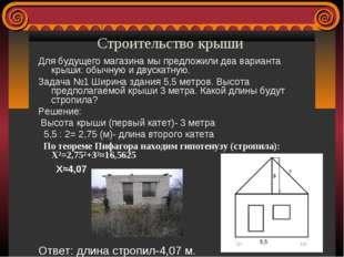 Строительство крыши  Для будущего магазина мы предложили два варианта кр