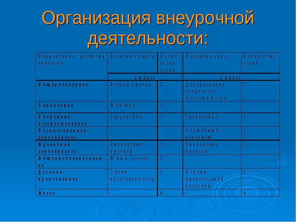 Организация внеурочной деятельности: