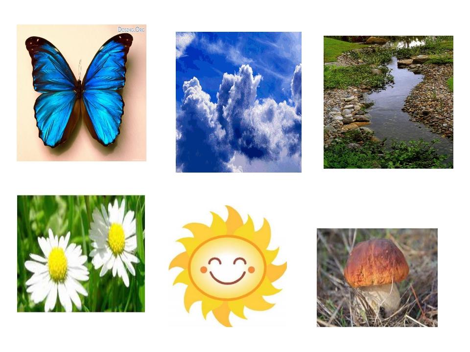 голых лысых неживая природа летом картинки российской